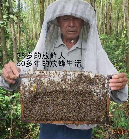 北峰山蜂蜜