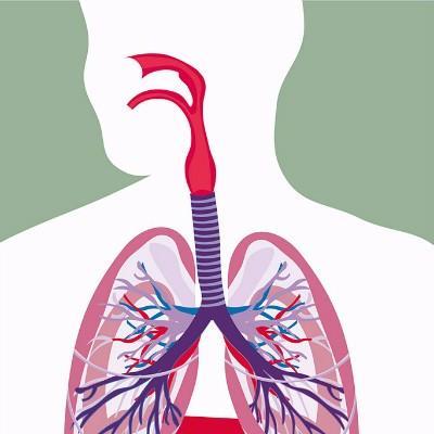 肺结核病人能活多久